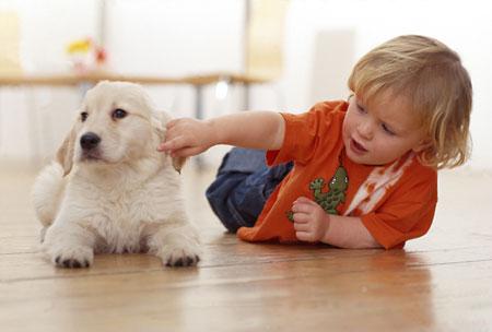 Η παρουσία σκύλου στο σπίτι ενισχύει το παιδικό ανοσοποιητικό σύστημα