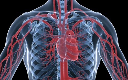 Η καρδιακή ανεπάρκεια αυξάνει τον κίνδυνο εκδήλωσης καρκίνου
