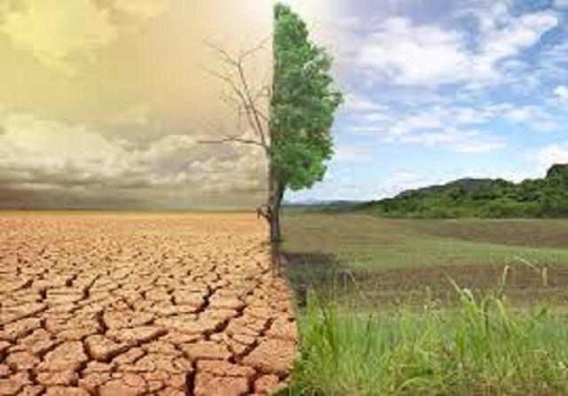 Κλιματική αλλαγή: H ηλιακή γεωμηχανική βλάπτει τη γεωργία