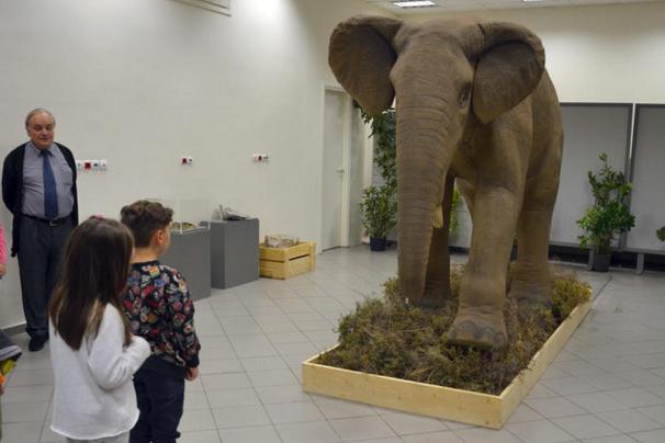 Λέσβος: Το παλαιότερο απολίθωμα της ομάδας των δεινοθηρίων στην Ευρώπη