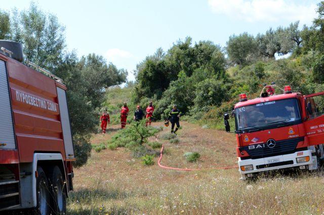 Τραγωδία στην Κρήτη: Νεκρή βρέθηκε ηλικιωμένη που αγνοούνταν στο Λασίθι
