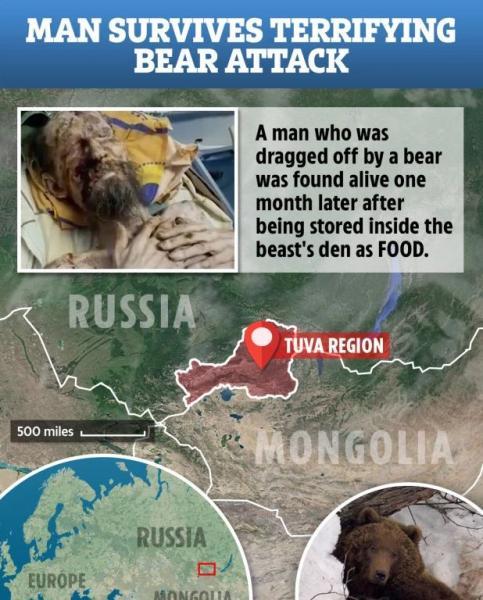 Αποτέλεσμα εικόνας για Αρκούδα κρατούσε άνδρα για 30 μέρες στη φωλιά της; - Η εικόνα που σοκάρει