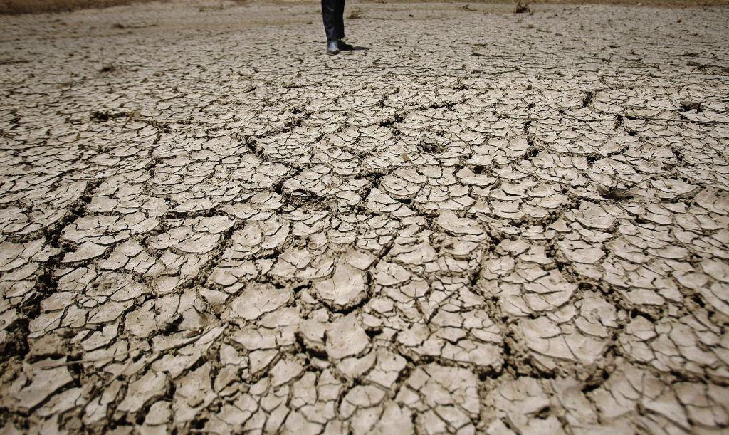 Παγκόσμια Ημέρα για την καταπολέμηση της απερήμωσης και της ξηρασίας