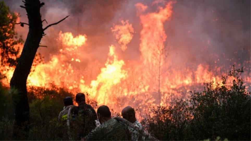 Συναγερμός στην Πυροσβεστική: Μεγάλη φωτιά στους Αγίους Θεοδώρους | in.gr