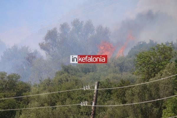 kefalonia3-600x400.jpg