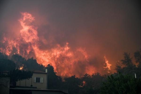 Πύρινη λαίλαπα στην Εύβοια: Χωριά παραδόθηκαν στις φλόγες, δύσκολο το έργο των εναέριων μέσων | in.gr