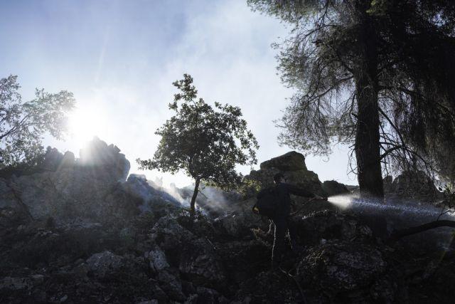 Εύβοια: Στάχτη 10.000 στρέμματα δάσους – Τεράστια οικολογική καταστροφή | in.gr