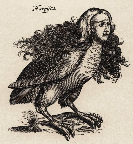 Harpij_-_I.I_Schipper_1660_graveur_Matthius_Merian_naar_J.Jonstons__Naekeurige_Beschryvingh_van_de_Natuur_ ΄Αρπυια: Το πιο ισχυρό αρπακτικό του πλανήτη