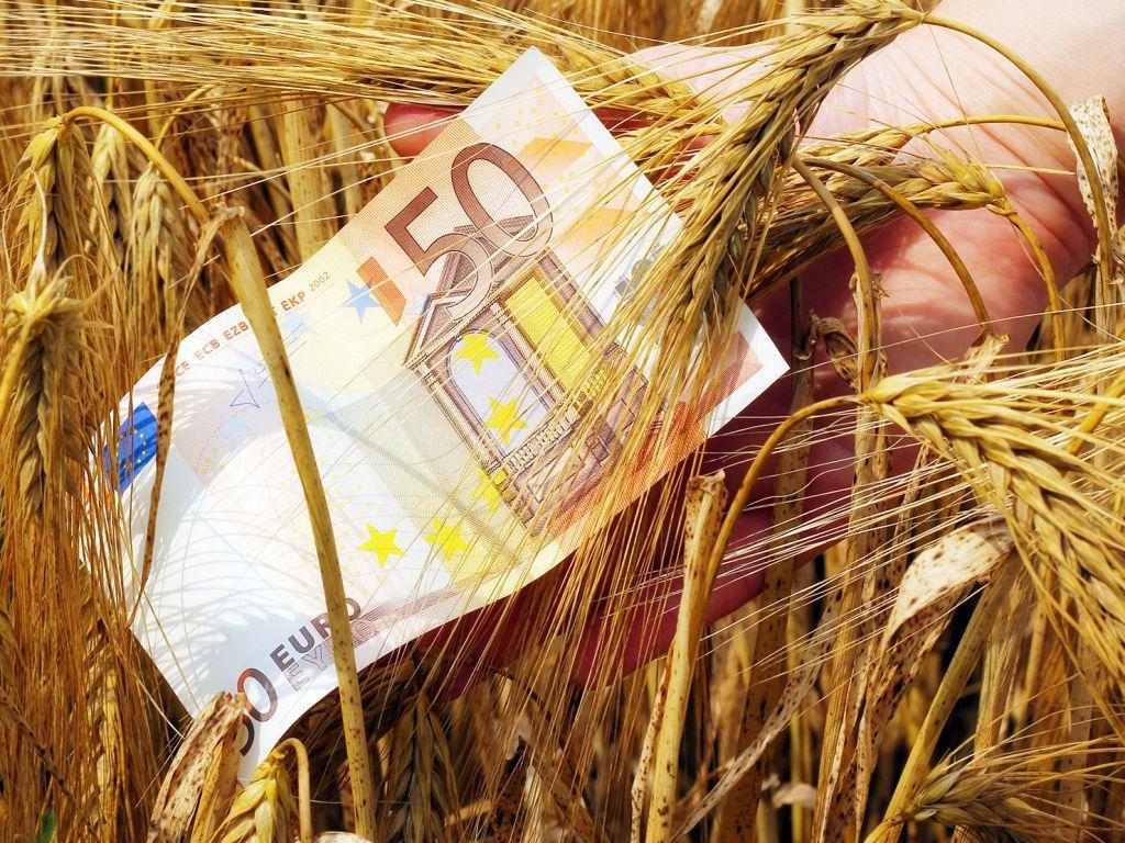 Η νέα ΚΑΠ φέρνει μειώσεις έως και 5% στις αγροτικές επιδοτήσεις