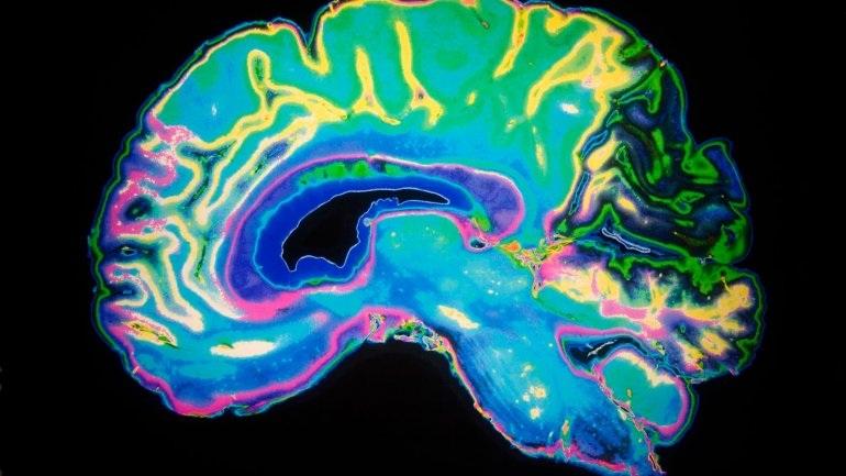 Έρευνα : Τι αυξάνει το προσδόκιμο ζωής σύμφωνα με τους επιστήμονες