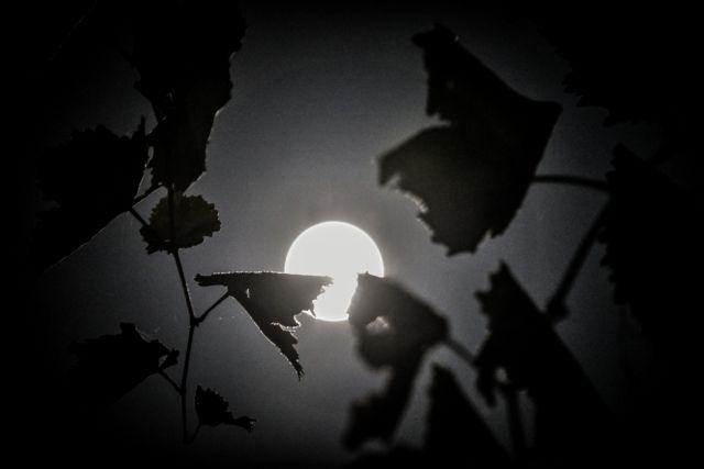 Απόψε η Πανσέληνος του Οκτωβρίου: Γιατί την αποκαλούν «μαύρη»;
