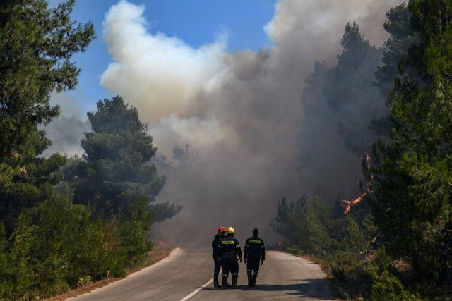 Αργολίδα : Φωτιά σε χαράδρα – Επιχειρούν 2 πετζετέλ