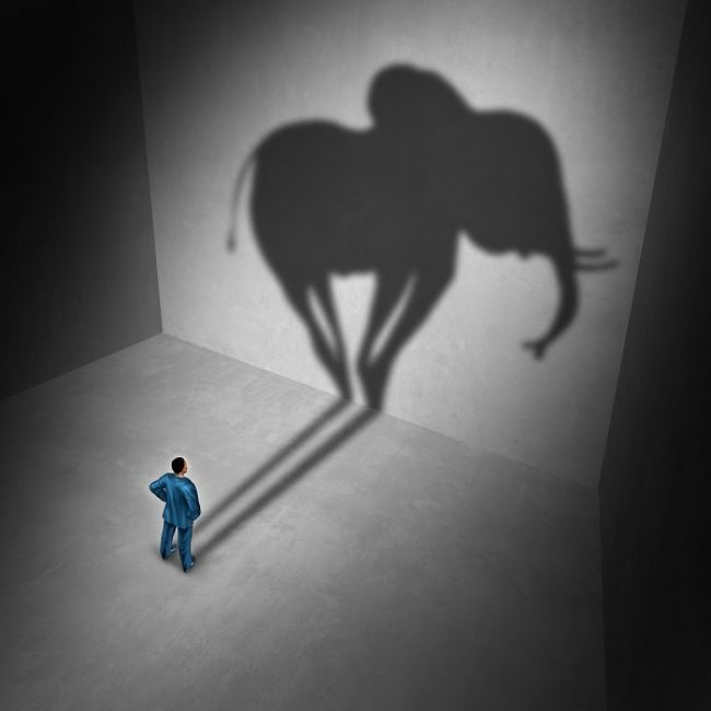 Τα ασυνόδευτα και ο ροζ ελέφαντας