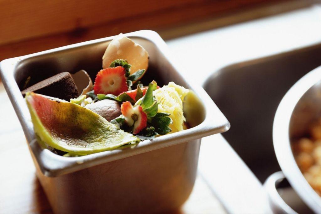Νέα μελέτη: Φαγητό 527 θερμίδων την ημέρα πετάει ο μέσος άνθρωπος