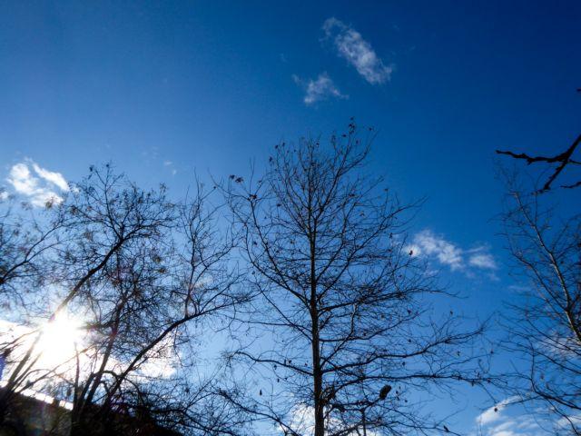 Καιρός: Ήλιος και άνοδος της θερμοκρασίας