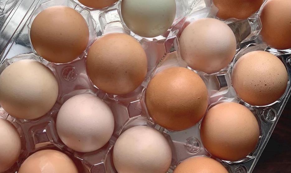 Δεν θα πιστεύετε που είναι χρήσιμα τα τσόφλια των αυγών