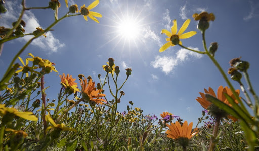 Κοροναϊός : Θα τον φρενάρουν πράγματι η άνοιξη και η ζέστη;