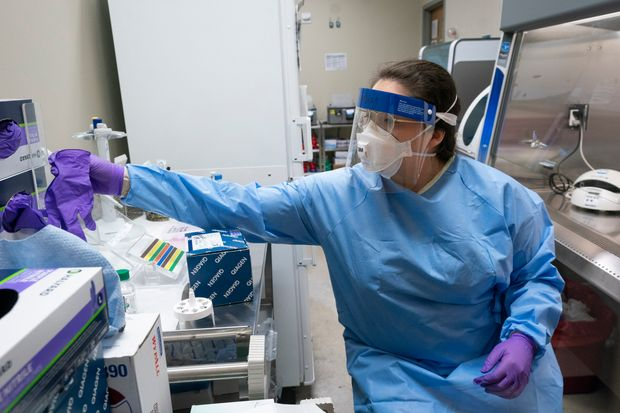 Νέα μελέτη : Ο κοροναϊός επιτίθεται στα αιμοφόρα αγγεία προκαλώντας βλάβες σε πολλά όργανα