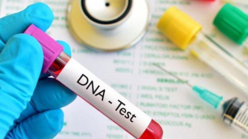 Σύστημα τσέπης για ανίχνευση DNA σε λιγότερο από δύο ώρες