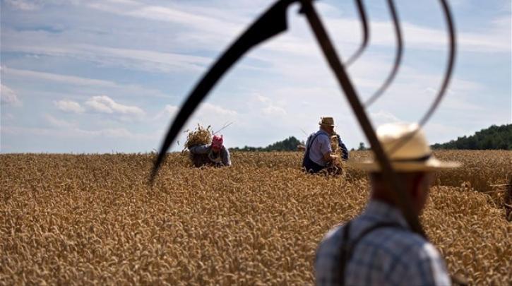 Κοροναϊός : Κίνδυνο παγκόσμιας διατροφικής κρίσης λόγω ελλείψεων βλέπουν ΟΗΕ – ΠΟΕ | in.gr