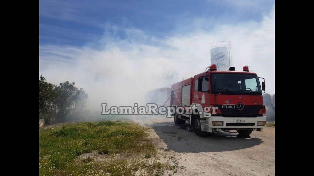 Λαμία: Φωτιά σε εργοστάσιο ξυλείας στη Νέα Μαγνησία