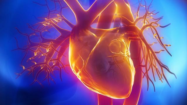 Τι να προσέξουν οι ασθενείς με προβλήματα καρδιάς το φετινό καλοκαίρι