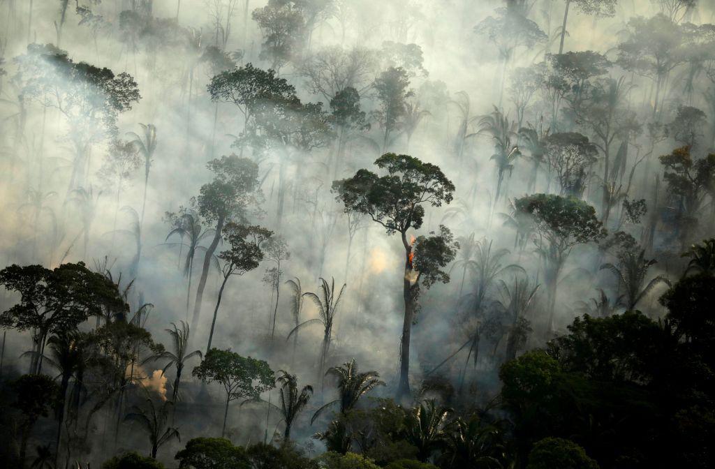 Αμαζόνιος : Το εκρηκτικό κοκτέιλ αποψίλωσης, πυρκαγιών και κοροναϊού απειλεί τη ζούγκλα