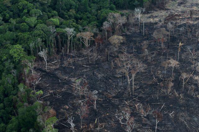 Αμαζόνιος : Δραματικές εικόνες από νέες πυρκαγιές