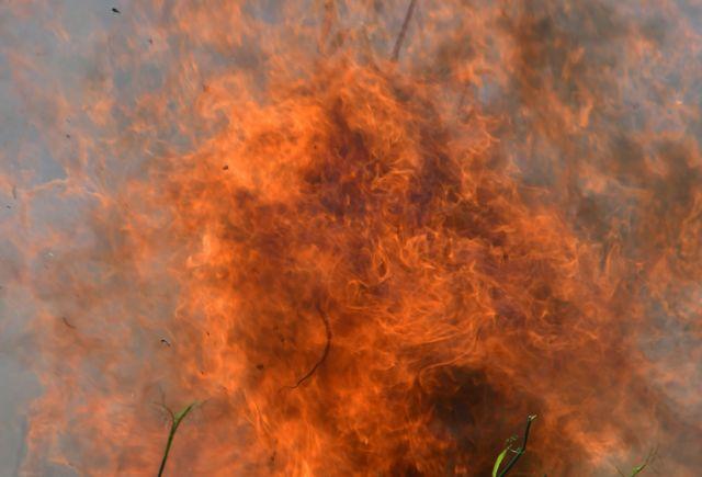 Πυρκαγιά και στο Κοντοδεσπότι Εύβοιας