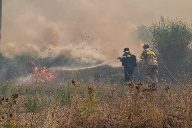 Φωτιά στην Ωλένη Ηλείας σε δασική έκταση – Μεγάλη κινητοποίηση της Πυροσβεστικής