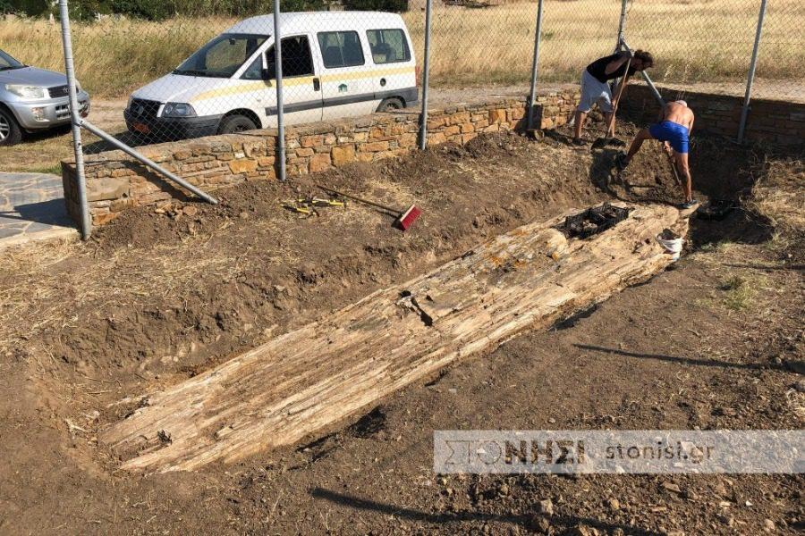Ανακαλύφθηκε γιγαντιαίος απολιθωμένος κορμός οκτώ μέτρων στη Λήμνο