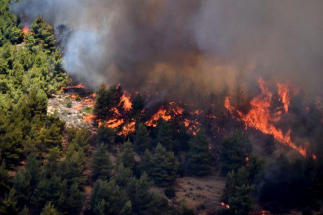 Μεγάλη φωτιά στη Μάνη: Εκκενώνεται προληπτικά οικισμός