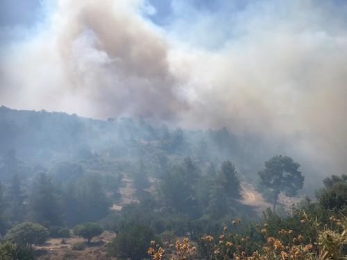 Κύπρος: Τεράστια πυρκαγιά σε Λεμεσό και Πάφο – Ανεξέλεγκτα μέτωπα με έξι εστίες
