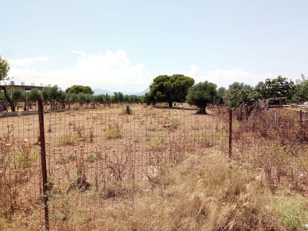 Οικόπεδα εκτός σχεδίου : «Βόμβα» στην περιουσία χιλιάδων ιδιοκτητών
