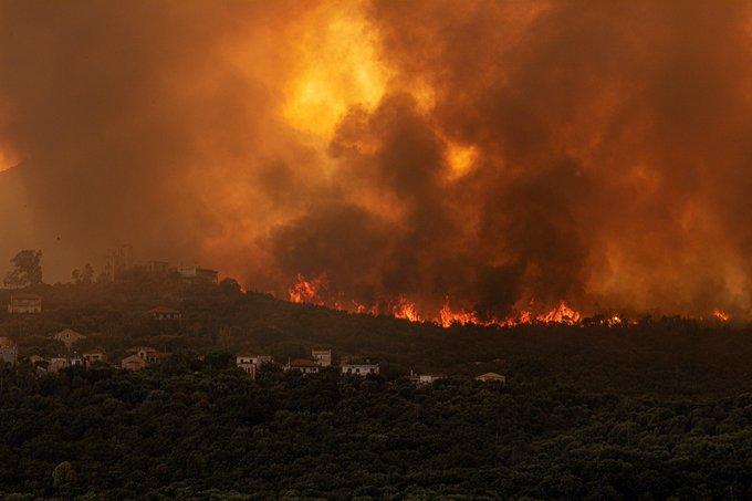 Σαράντα οκτώ δασικές πυρκαγιές εκδηλώθηκαν το τελευταίο 24ωρο