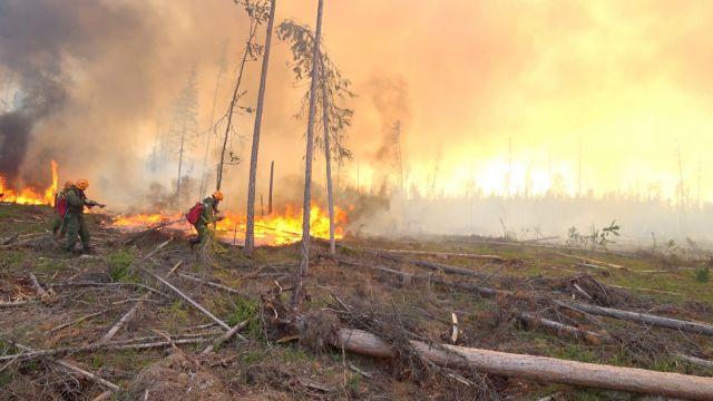 Ο πλανήτης φλέγεται: Αύξηση των επιπέδων διοξειδίου του άνθρακα που εκλύουν οι πυρκαγιές της Αρκτικής
