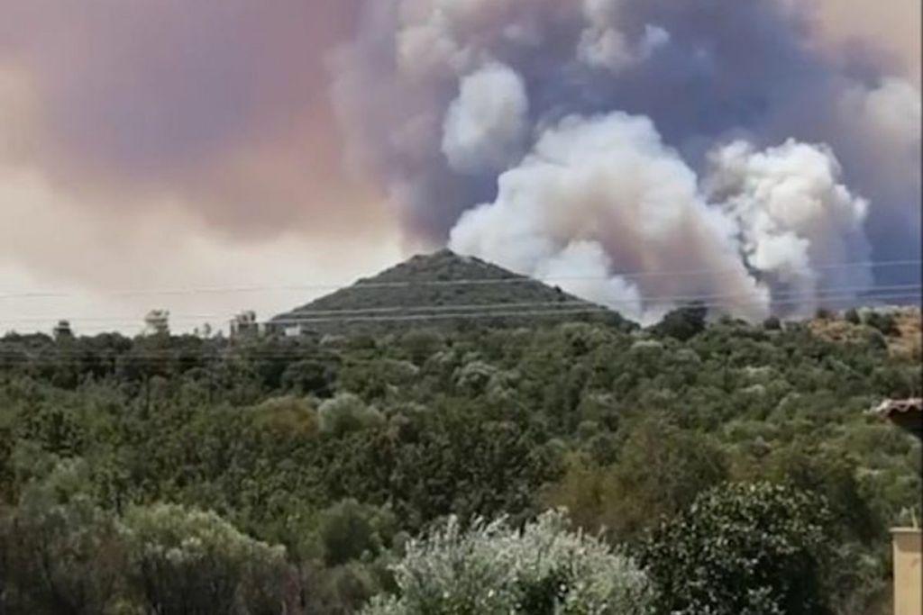 Πυρκαγιά στη Μάνη : Διάσπαρτες εστίες φωτιάς, χιλιάδες στρέμματα δάσους καταστράφηκαν