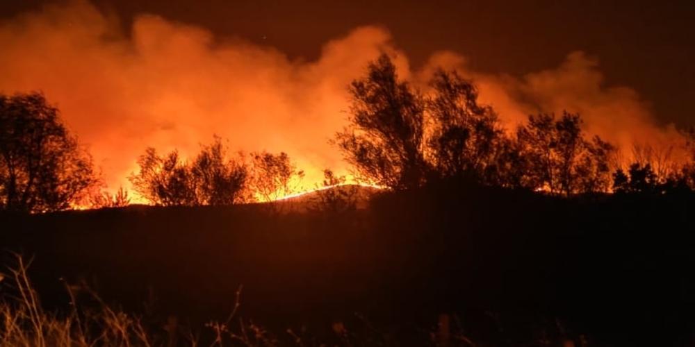 Έβρος: Οργανωμένο σχέδιο εμπρησμών εξετάζουν οι αρχές – 15 φωτιές το τελευταίο 48ωρο