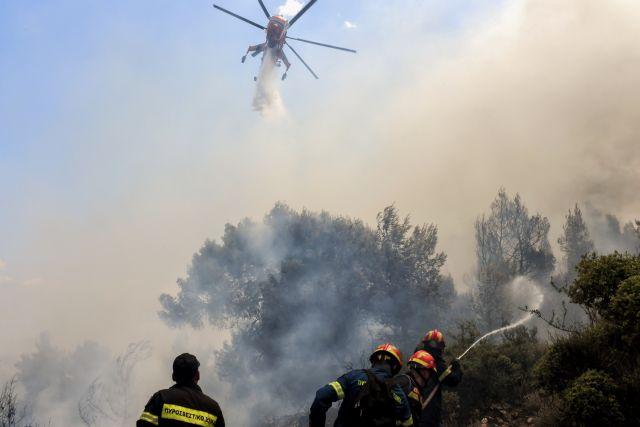 Φωτιά στον Άγιο Νίκωνα στη Μεσσηνία – Στη μάχη εναέρια μέσα