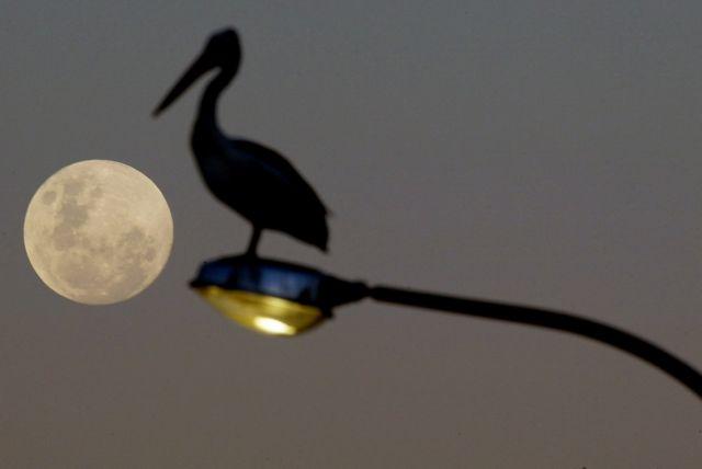 Σελήνη : Ποιος θα κατασκευάσει το πρώτο δίκτυο κινητής τηλεφωνίας στο φεγγάρι