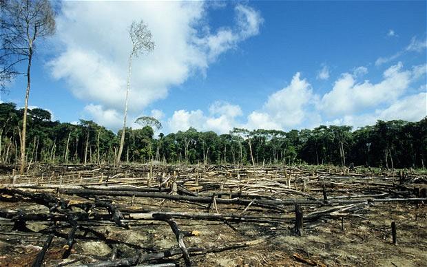 Πράσινη Συμφωνία : Μια κακή συμφωνία για τον πλανήτη;