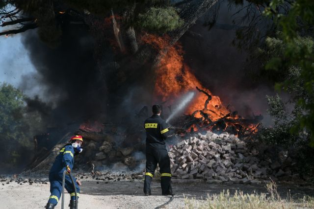 Φωτιά στους Αγίους Θεοδώρους : Ισχυρή δύναμη της Πυροσβεστικής στο σημείο