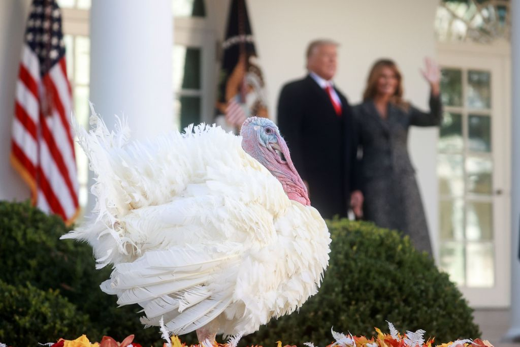 Τραμπ: Τήρησε την παράδοση και έδωσε χάρη στη γαλοπούλα