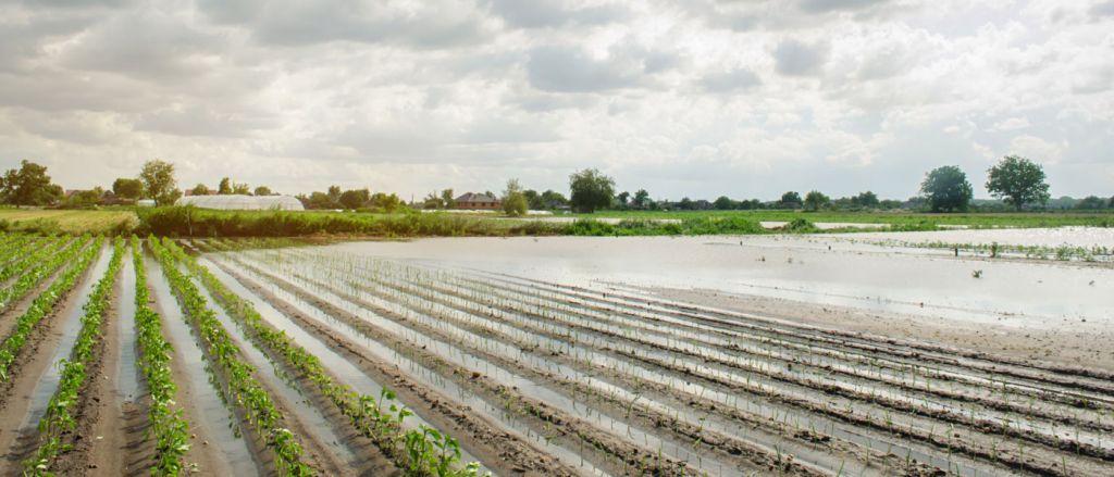 Σέρρες: Διαδικασία δήλωσης ζημιών και αποζημίωσης από τις πλημμύρες