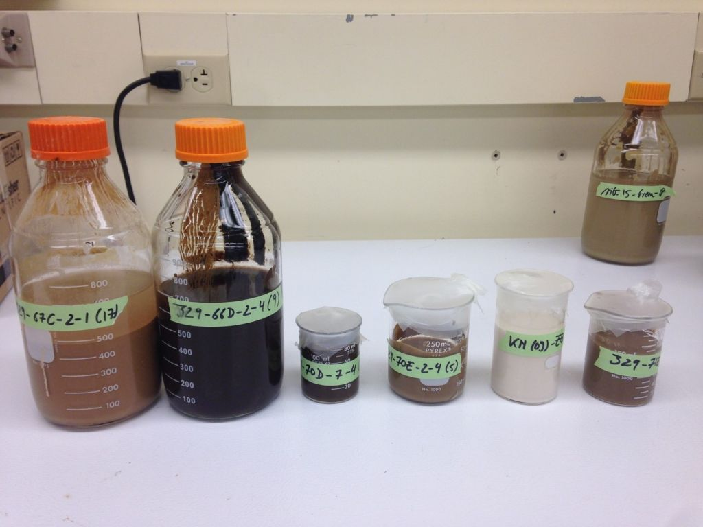 Marine sediment slurries used in radiation