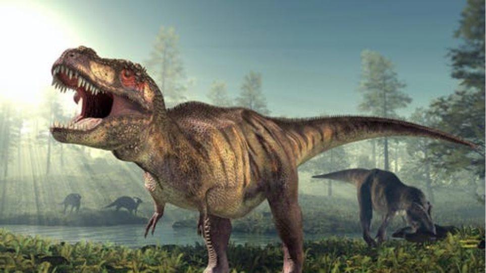 Νέα στοιχεία για τους Τυραννόσαυρους: Μπορεί να κυνηγούσαν σε κοπάδια όπως οι λύκοι