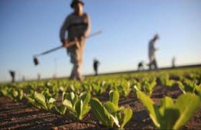 Λιβανός : Απαλλαγή από το τέλος επιτηδεύματος για τους αγρότες και για το 2020