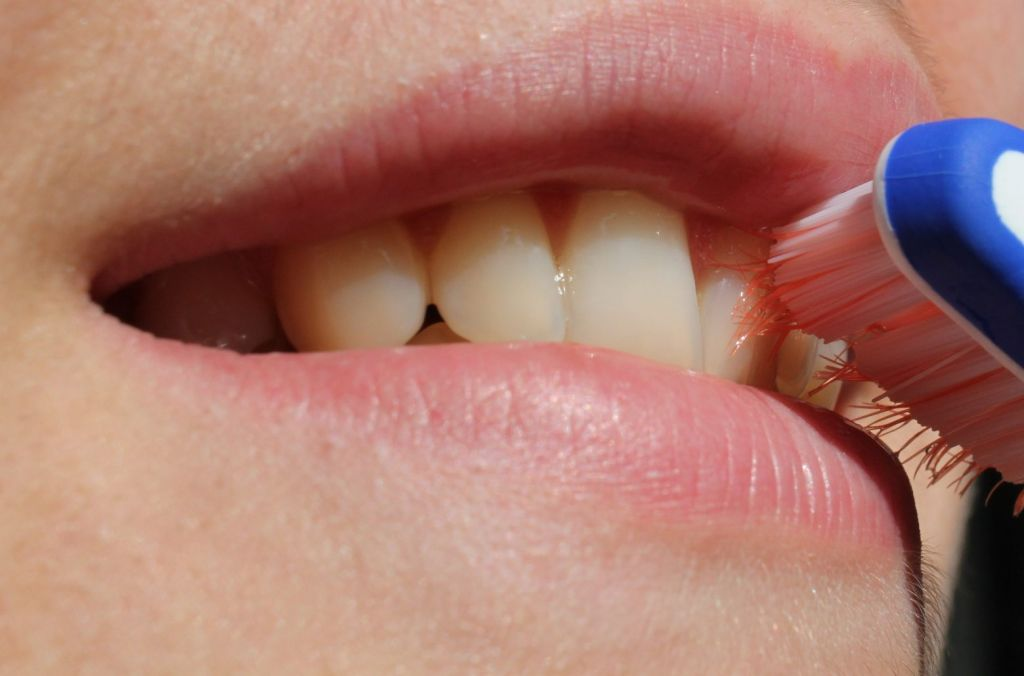 O πρώτος κυτταρικός άτλαντας των ανθρώπινων δοντιών