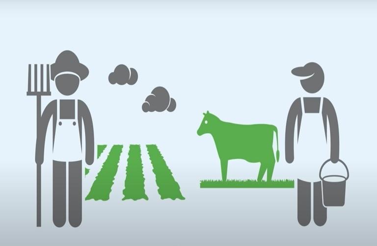 Σε εξέλιξη η Απογραφή Γεωργίας - Κτηνοτροφίας 2021 | in.gr