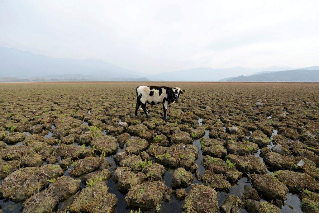 Εκτός από ζέστη, η κλιματική αλλαγή φέρνει και πείνα
